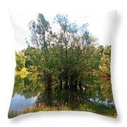 Bundek Park Zagreb #3 Throw Pillow