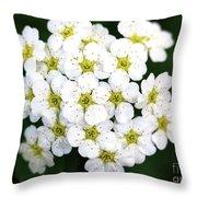 Bundle Throw Pillow