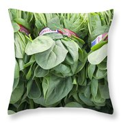 Bundled Spinach After Harvest Throw Pillow