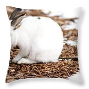 Bunnies Three Throw Pillow