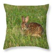 Bunny At Breakfast Throw Pillow