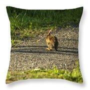 Bunny Eating On The Run Throw Pillow