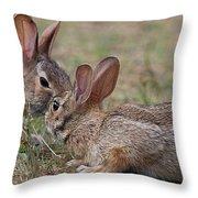 Bunny Encounter Throw Pillow