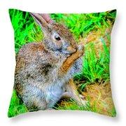 Bunny Secrets Throw Pillow