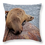Buoy Break Throw Pillow
