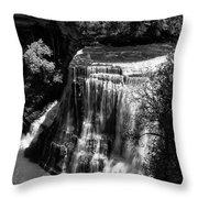 Burgess Lower Falls 2 Throw Pillow