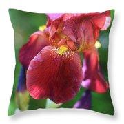 Burgundy Iris Throw Pillow