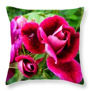Burgundy Rose And Rose Bud Throw Pillow