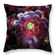 Burgundy Succulenta Throw Pillow