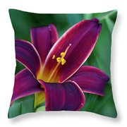 Burgundy Wine Red Daylily Throw Pillow