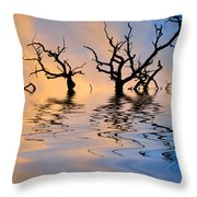 Slowly Sinking Throw Pillow