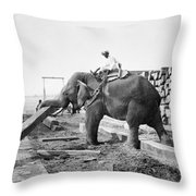 Burma: Elephant Throw Pillow