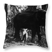 Burma: Elephants, 1960 Throw Pillow