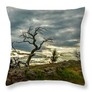 Burmis Tree And Wind Swept Pines Throw Pillow