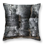 Burn Throw Pillow