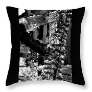 Burned House Detail Throw Pillow