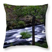Burney Creek Throw Pillow