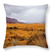 Burnt Earth Throw Pillow