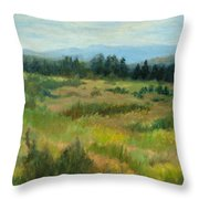 Burnt Mesa Trail Throw Pillow