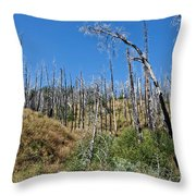 Burnt White Firs Throw Pillow