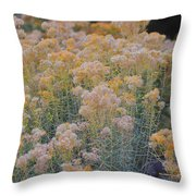 Burro Bush Throw Pillow
