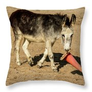 Burro Playing With Safety Cone Throw Pillow