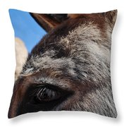 Burro Utah Throw Pillow