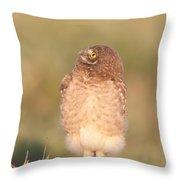 Burrowing Owl Fledgling II Throw Pillow