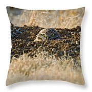 Burrowing Owl Peaking Outta The Hole  Throw Pillow