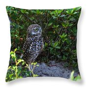 Burrowing Owls At Guard Throw Pillow