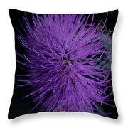 Burst Of Violet Throw Pillow