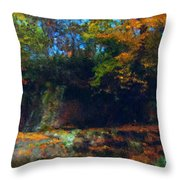 Bursting Autumn Cheer Throw Pillow