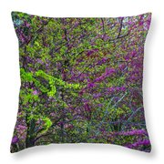 Bursting Forth Color Throw Pillow