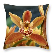 Bursting Open Throw Pillow