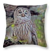 Buschman Park Owl Throw Pillow