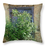 Bush And Window Throw Pillow