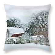 Bush Barn Throw Pillow