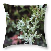 Bush Throw Pillow
