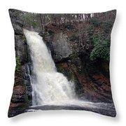 Bushkill Falls Throw Pillow