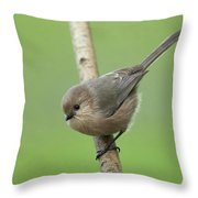 Bushtit Throw Pillow