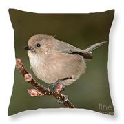 Bushtit On A Branch Throw Pillow