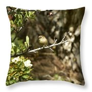 Bushtit On Branch In The Sun Throw Pillow