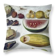 Bustos: Still Life, 1874 Throw Pillow