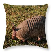 Busy Armadillo Throw Pillow