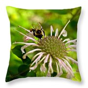 Busy As A Bee Throw Pillow by Valeria Donaldson