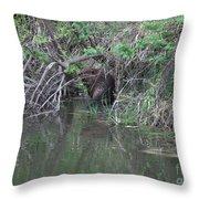 Busy Beaver Throw Pillow