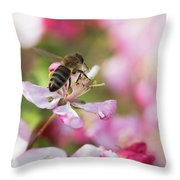 Busy Bee On A Crabapple Tree Throw Pillow
