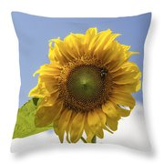 Busy Bee On A Sunflower Throw Pillow