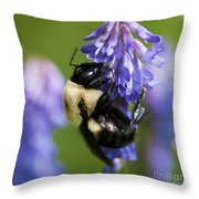 Busy Bumblebee.. Throw Pillow