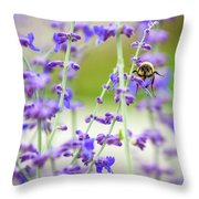 Busy In Lavender 3 Throw Pillow